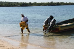 A Blue Economy Investment Facility and associated process would allow governments to accelerate, focus and strengthen moves towards a genuine Blue Economy approach. They would be able to utilize their and private sector expertise and orientate, develop, and tender projects and initiatives which deliver improved livelihoods, improved environmental quality, and improved spending of investment flows - Fishermen at work, Little Bay, Jamaica. Credit: Zadie Neufville/IPS