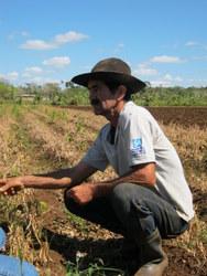 Jorge Medina practices integrated, diversified farming on land near Havana.  Credit: Ivet González/IPS