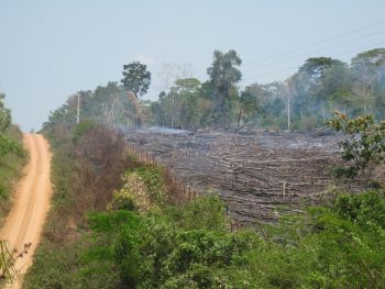 Tract of rainforest cleared by burning in the state of Acre, Brazil. Credit: Mario Osava/IPS