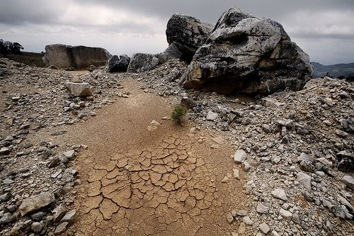 Prolonged drought can mean desertification. Credit: Mauricio Ramos/IPS