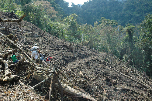 The open wounds of the Amazon.  Credit: Rolly Valdivia/IPS