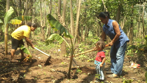 Elsy Álvarez and María Menjivar – with her young daughter – planting plantain seedlings in a clearing in the forest.  Credit: Claudia Ávalos/IPS
