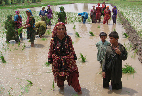 Having land has made all the difference to Zar Bibi, a 60-year-old widow in Pakistan (centre). Credit: Zofeen Ebrahim/IPS