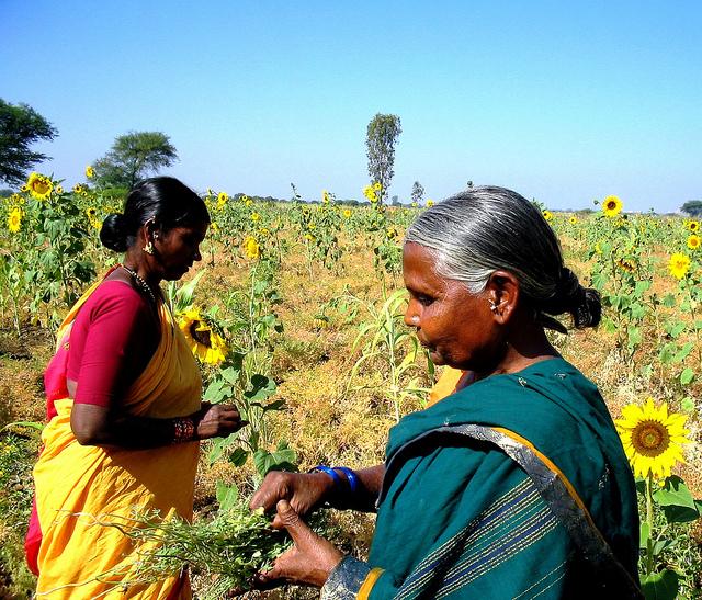 Dalit Women Farmers Inter Press Service Inter Press