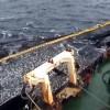 Overexploitation threatens the Chilean jack mackerel. Credit: Courtesy of Fundación NuestroMar