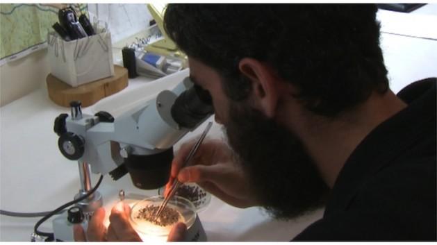 Searching for signs of diamonds in Israeli soil. Credit: Pierre Klochendler/IPS.