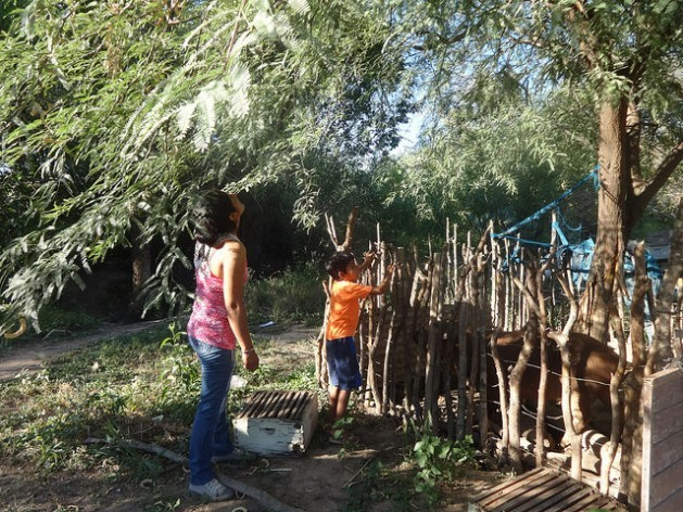 A boy helps his mother, Graciela Ardiles, do chores on their small farm in Arraga in the northern Argentine province of Santiago del Estero. Thanks to a rural development programme that has boosted the family's income, she says her children will be able to continue studying, and even go on to university, unlike her parents. Credit: Fabiana Frayssinet/IPS