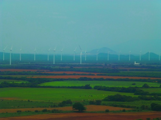 A wind park in the southern Mexican state of Oaxaca, where local communities and indigenous people are fighting the installation of wind turbines in their territory. Credit: Courtesy of the International Service for Peace (SIPAZ)