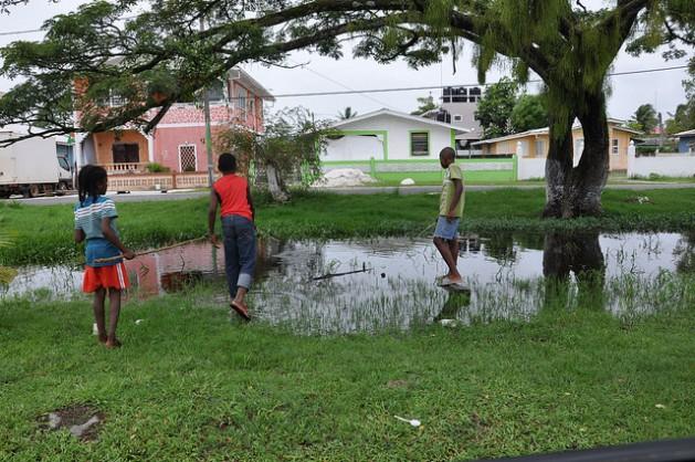 Boys catch fish in a gully that runs through their community in Guyana. Credit: Desmond Brown/IPS