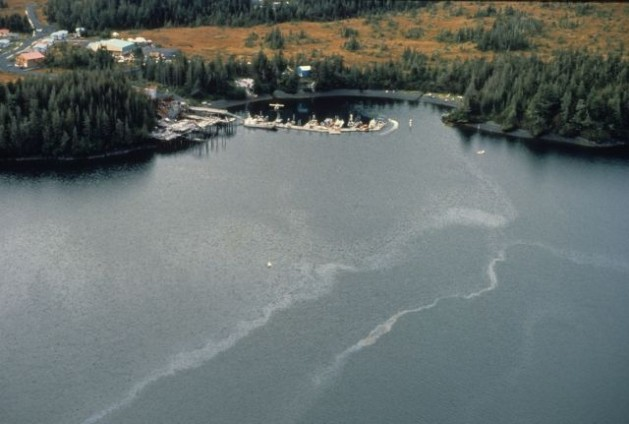 Exxon was responsible for the Exxon Valdez oil spill in 1989. Here, part of the spill in the Chenega Bay, Evans lsland (Prince William Sound). Credit: ARLIS Reference.