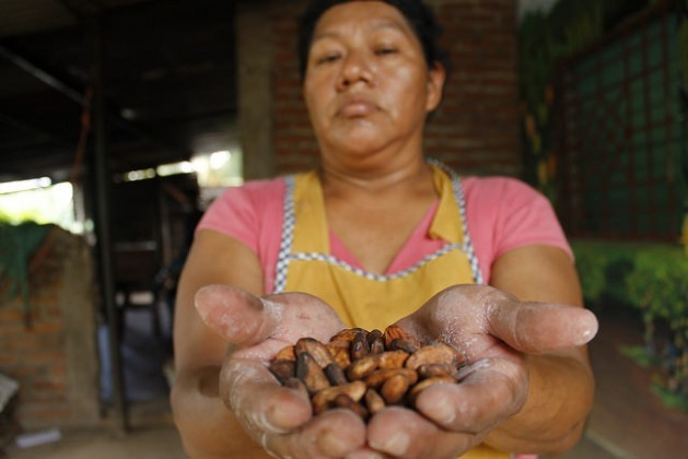 The hands of Idalia Ramón care for the cacao beans produced in the town of Caluco in western El Salvador. She and a group of women transform the beans into hand-made chocolate, in an ecological process that is taking off in this Central American country thanks to the national project Alianza Cacao, aimed at reviving the cultivation of cacao and improving the future of 10,000 small farming families. Credit: Edgardo Ayala/IPS