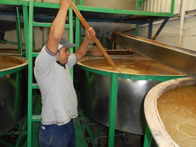 The corn is cooked with limewater to eliminate aflatoxins that cause liver and cervical cancer. Here a worker at the Grulin company is stirring the corn before it is washed, drained and ground, in San Luís Huexotla, Mexico. Credit: Emilio Godoy/IPS