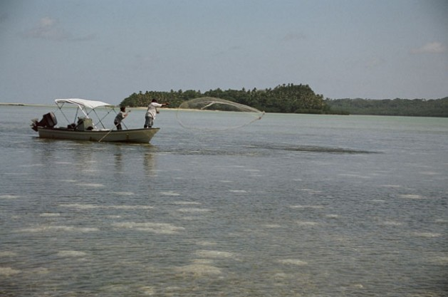 Fisheries in Africa, the Caribbean and Pacific – Immense Opportunities, Critical Challenges
