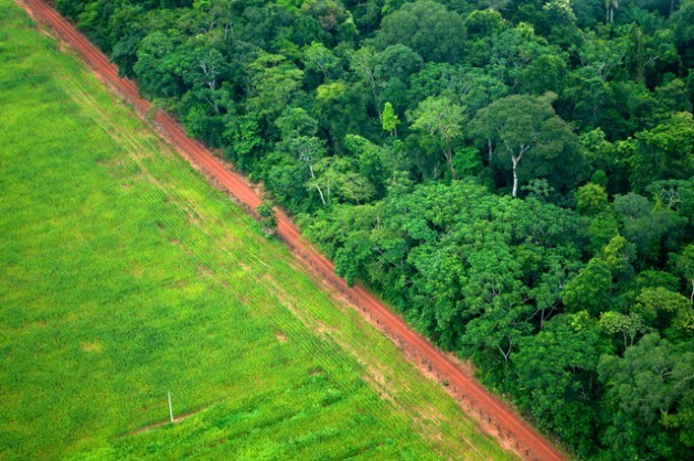 Deforestation, as seen in this part of Rio Branco, the northern Brazilian state of Acre, is one of the main sources of greenhouse gas emissions in Latin America. Credit: Kate Evans/Center for International Forestry Research