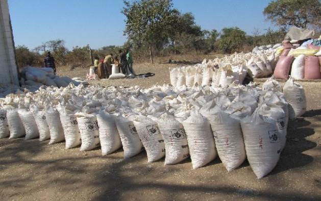 Bags of maize at the Food Reserve Agency Depot in Kasiya, Pemba district, Southern Zambia. Credit: Friday Phiri/IPS