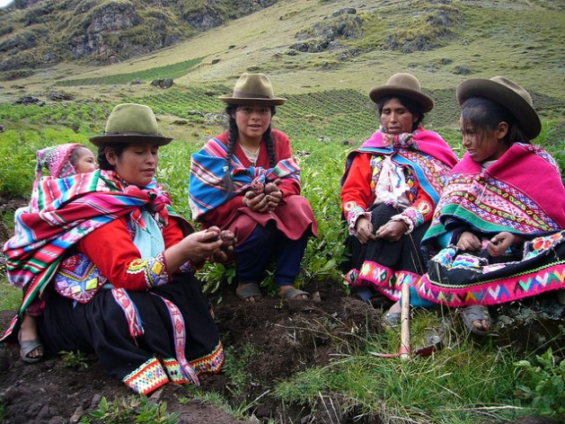 Peruvian peasant women working in the potato fields. Credit: Milagros Salazar/IPS