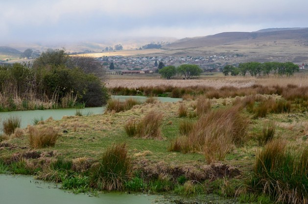 A stream meanders through a wetland in Wakkerstroom, Mpumalanga. The region is a Strategic Water Source Area, the segments of South Africa, Lesotho and Swaziland that make up 8 percent of land area but account for 50 percent of water supply. Credit: Mark Olalde/IPS