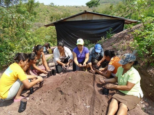 Members of a cooperative of women farmers in Nicaragua build a greenhouse for thousands of seedlings of fruit and lumber trees aimed at helping to fight the effects of climate change in a village in the department of Madriz. Credit: Femuprocan