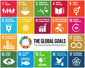 SDGs300