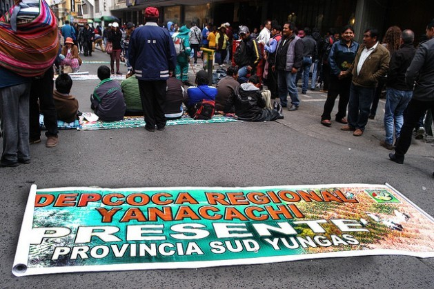 Coca leaf growers from the traditional region of Yungas, in northwest Bolivia, surround the legislature in the city of La Paz, demanding an expansion of the legal cultivation area by the new law. Credit: Franz Chávez.