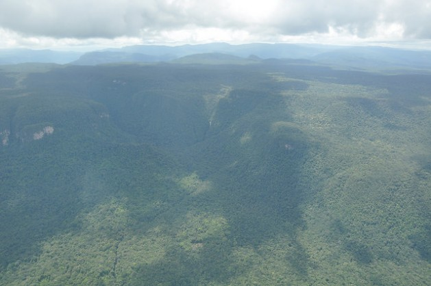 In November 2009, Guyana made a deal with Norway, which agreed to pay up to 250 million dollars over the course of five years if Guyana maintained its low deforestation rate. Credit: Desmond Brown/IPS