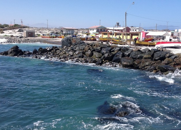 Punta de Choros, a picturesque cove in northern Chile, has become a major tourist draw, and the number of restaurants, lodgings and whale-watching boat tours has climbed. Credit: Orlando Milesi/IPS