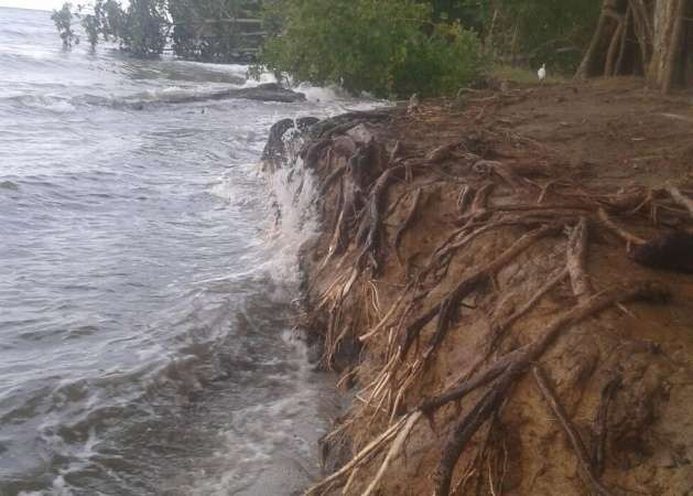 The sea is encroaching fast in the coastal area of Balfate, along Honduras' Caribbean Coast, where natural barriers are disappearing and the sea is advancing many metres inland. Credit: Courtesy of Hugo Galeano to IPS