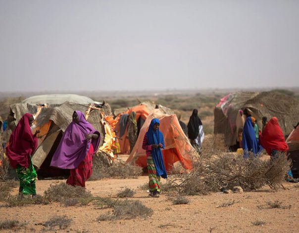 Africa's growing challenge of rural youth unemployment that is driving distress migration and radicalisation of disillusioned young men
