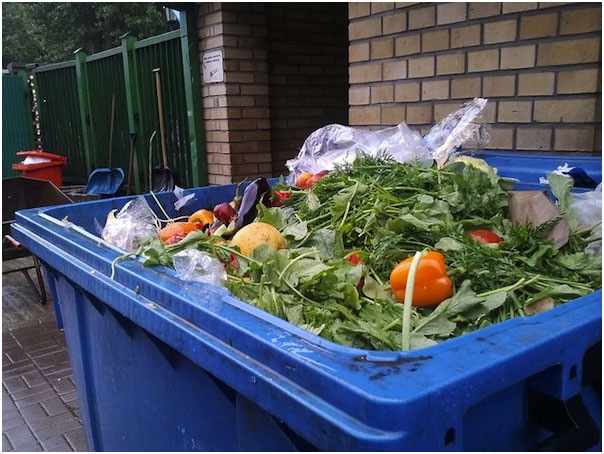 Food Waste Enough to Feed World's Hungry Four Times Over