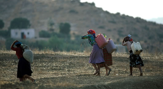 """Arab states must continue to seek innovations to overcome water scarcity in the face of climate change,"""" said FAO's Director-General José Graziano da Silva"""