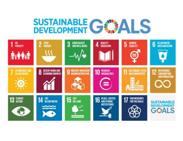 Partnerships Key to Implementing 2030 Agenda