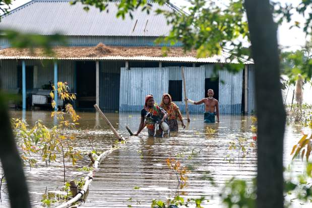 South Asia Floods: Women with goats come out of their submerged house, in Shibaloy, Manikganj district, Bangladesh. Credit: Farid Ahmed/IPS