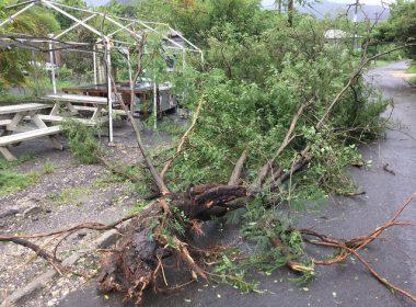 "Latest Major Hurricane Leaves Dominica ""Devastated"""