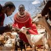 Innovation for Climate-Smart Agriculture Key to Ending Hunger in Kenya