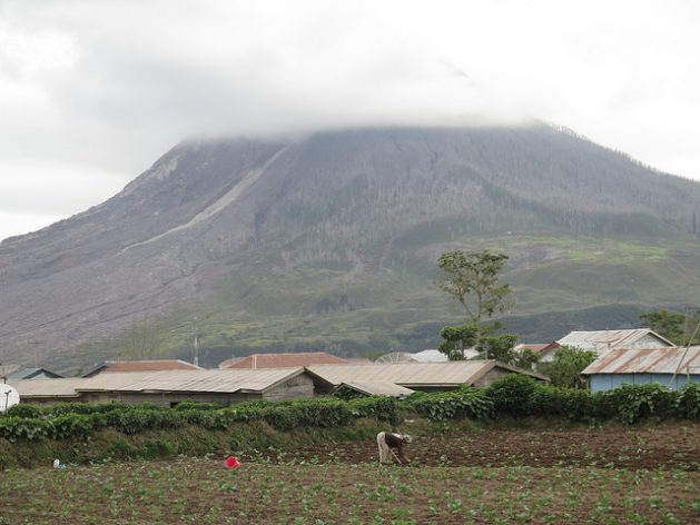 A woman works in her vegetable patch at the foot of Mount Sinabung, North Sumatra, Indonesia. Credit: Kafil Yamin/IPS