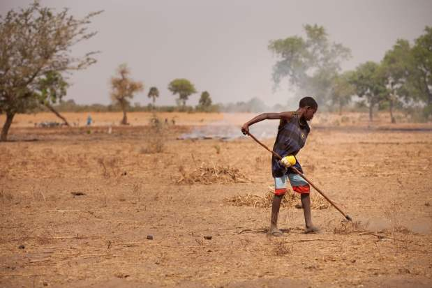 World Food Day - Land degradation, a reason for rural people to migrate, is a prominent problem in Senegal. Photo: M. Mitchell/IFPRI.