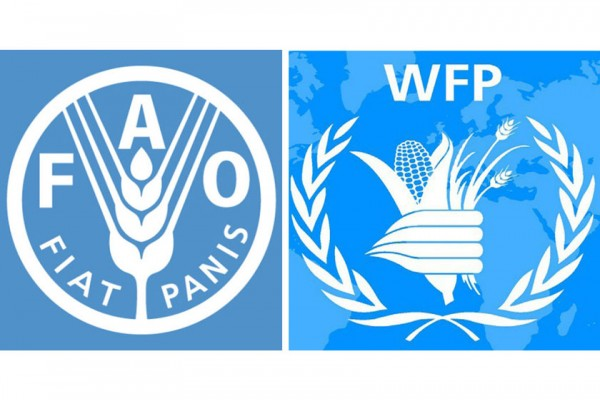FAO, WFP reaffirm their commitment to working for Zero Hunger in the Middle East