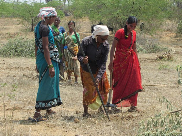 Women restore degraded land in southern India under a government-funded program. Credit: Stella Paul/IPS