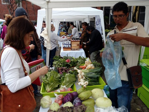 Mexican agriculture has begun to feel the impacts of climate change, affecting the productivity of some staple foods in the local diet. The photo shows a vegetable street market, with products that go directly from the producers to consumers, in the west of Mexico City. Credit: Emilio Godoy / IPS