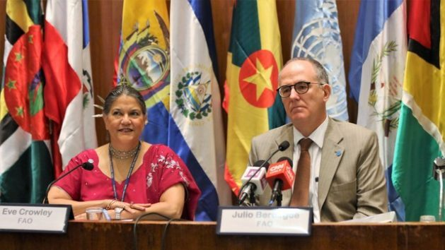 Identifying territories where rural poverty is most entrenched in Latin America and the Caribbean to apply new tools and innovative policies to combat hunger is the new strategy that will be discussed at a ministerial meeting to be held in early March. - FAO regional representative Julio Berdegue (R), and the deputy regional representative Eve Crowley, during the presentation of the organisation's 35th Regional Conference objectives, to be held in March in Jamaica. Credit: FAORLC