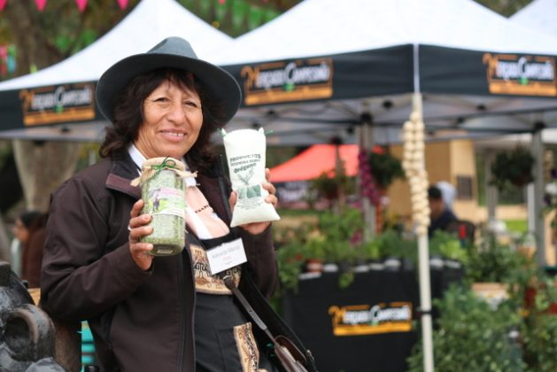 Adelaida Marca, an Aymara indigenous woman, has been successful at the Rural World Expo in Santiago selling her sought-after premium oregano, which has a special fragrance, grown on terraces in Socoroma, her village in the highlands of northern Chile. Credit: Indap