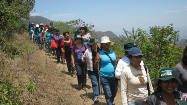 Under the hot sun of the Pacific Ocean coast, in the department of Piura, 25 women farmers undergoing training in the Agroecological School return from a technical assistance activity in the province of Morropón, in northern Peru. Credit: Courtesy of Sabina Córdova