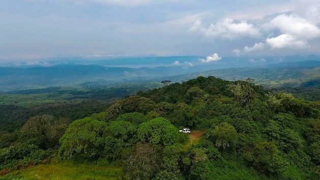 The DRC has the world's second largest rainforest, about 135 million hectares, which is a powerful bulwark against climate change. Credit: Forest Service photo by Roni Ziade