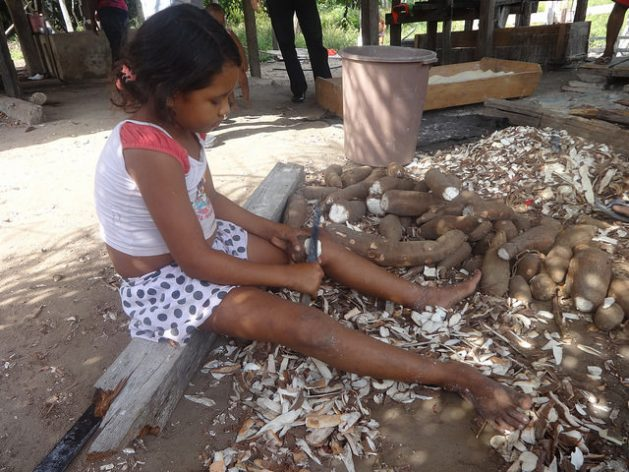 A little girl peels manioc to make flour in Acará, in the state of Pará, in the northeast of Brazil's Amazon region. In the rural sectors of Brazil, it is a deeply-rooted custom for children to help with family farming, on the grounds of passing on knowledge. Credit: Fabiana Frayssinet / IPS