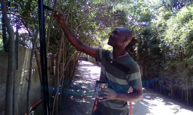Salomón Henry, a painter and electrician, has lived for three years in Santiago with his family. He has a five-year residency permit, thanks to a job contract in an exclusive condominium, where he reinstalled the electrical network, among other tasks. In 2014, there were fewer than 1,800 migrants from Haiti; by April of this year there were nearly 120,000, according to official figures. Credit: Orlando Milesi/IPS
