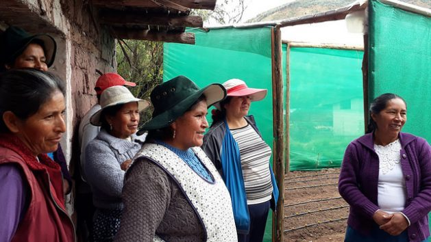 In the community of Paropucjio, several women stand next to the solar greenhouse they have just built together on the plot of land belonging to one of them, in the district of Cusipata, more than 3,300 metres above sea level in the Cuzco highlands region in Peru. They get excited when they talk about how the greenhouses will improve their families' lives. Credit: Mariela Jara/IPS