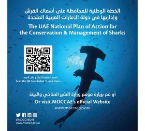 MoCCAE develops plan for shark conservation
