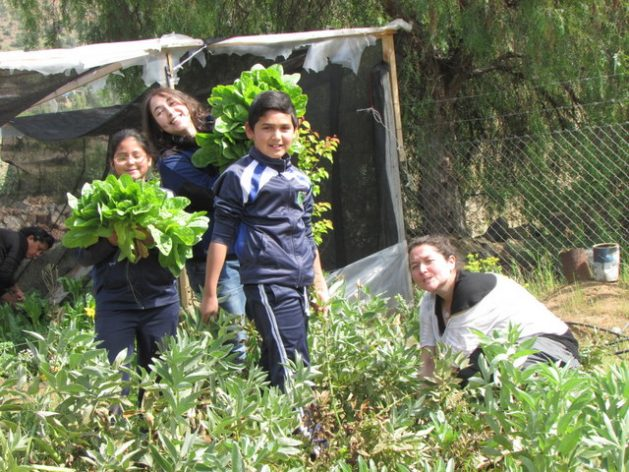 Students from the rural school of El Llanito de Punitaqui, in the Atacama Desert in northern Chile, show the vegetables from the garden they irrigate with harvested rainwater. Credit: Courtesy of the Un Alto en el Desierto Foundation