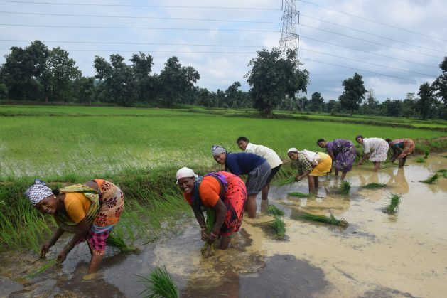 Women produce 60-80 percent of the food and 90 percent of the dairy products in our country. They have a high stake in solving the water crisis, and they've proven to be effective champions of solutions for their families and communities