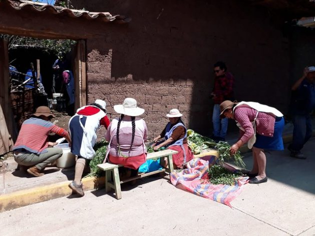 700,000 women are engaged in agricultural activities in Peru, playing a key role in the food security and sovereignty of their communities, despite the fact that women farmers have less access to land, water management and credit than men
